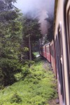 mit der Brockenbahn durch den Fichtenwald