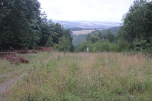 ehemaliger Grenzstreifen in der Nähe von Gut Herbigshagen